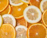 Citrus mix Royalty Free Stock Images