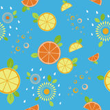 Citrus mix. Seamless pattern. Blue stock image