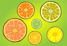 Citrus mix Royalty Free Stock Photography