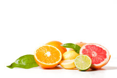 Citrus mixture Stock Photo