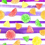Citrus modell för vattenfärg med grapefrukten, limefrukt, apelsin, citronskiva på randig bakgrund seamless citrus modell royaltyfri fotografi