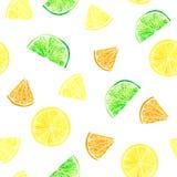 Citrus modell för vattenfärg med grapefrukten, limefrukt, apelsin, citronskiva Citrus sömlös modell, botaniskt naturligt royaltyfri fotografi