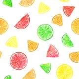 Citrus modell för vattenfärg med grapefrukten, limefrukt, apelsin, citronskiva Citrus sömlös modell, botaniskt naturligt royaltyfri foto