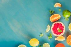 Citrus modell på blått arkivfoton