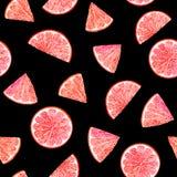 Citrus modellgrapefrukt för vattenfärg, blom- sömlös modell, botanisk naturlig illustration på svart bakgrund Hand arkivfoton