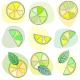 Citrus mojito pattern Royalty Free Stock Photos