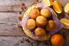 Citrus muffins and fresh oranges close-up. horizontal top view Royalty Free Stock Photography