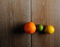 citrus ny frukt Arkivbild