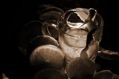 Citrus och en kopp av fruktsaft på en mörk cocktailpartybakgrund arkivfoton