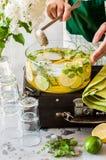 Citrus och Herb Lemonade arkivbilder