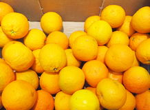 Citrus orange fruits in box supermarket Stock Images