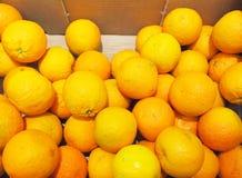 Citrus orange fruits in box supermarket Stock Images