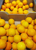 Citrus orange fruits in box supermarket Royalty Free Stock Photo