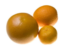 Citrus: orange, mandarin and grapefruit Royalty Free Stock Photo