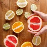 citrus orange pamela för samlingsgrapefruktcitron Royaltyfria Foton