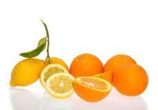 Citrus & oranges slices Stock Photos