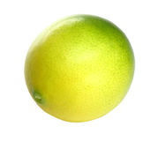 Citrus over white Royalty Free Stock Photo