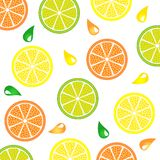 Citrus_pattern Royalty-vrije Stock Foto