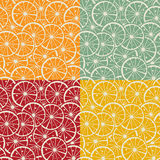 Citrus pattern collection Stock Photo