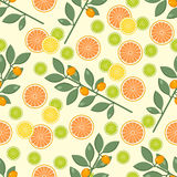 Citrus pattern. Fruit background. Summer bright background with lemon and orange. Royalty Free Stock Photography