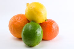 Citrus pile of four. Four citrus fruits in a pile royalty free stock photo