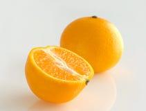 Citrus plants fruits. Stock Image