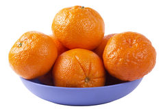 Citrus plate Stock Photo
