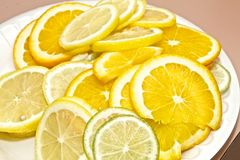 Citrus Platter Royalty Free Stock Images