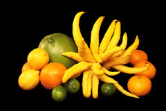 Citrus A Plenty Stock Photos