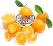 Citrus press, glass of juice and ripe oranges Stock Photography