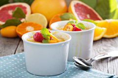 Citrus pudding in white ramekins. With oranges, grapefruit, kumquats and raspberries Royalty Free Stock Images