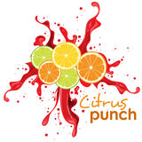 Citrus punch drink Royalty Free Stock Images