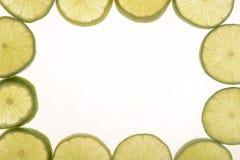 Citrus ram Arkivfoton