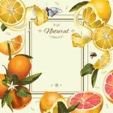 Citrus ram för tappning stock illustrationer