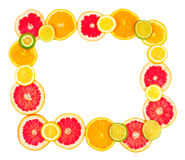citrus ramfrukt gjorde blandat Arkivfoto