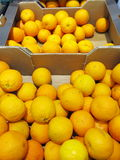 Citrus orange fruits in box supermarket Stock Photography