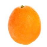 Citrus Round Orange Royalty Free Stock Photography