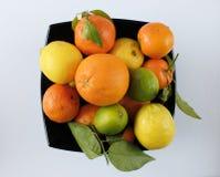 Citrus sammansättning i en svart bunke på en vit bakgrund arkivfoto
