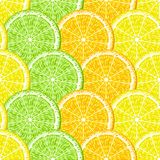 Citrus seamless Royalty Free Stock Photography