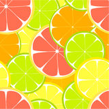 Citrus seamless Stock Photo