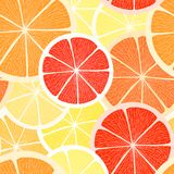 Citrus seamless background. Stock Images