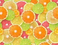 Citrus seamless background stock photo