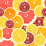 Citrus seamless background Royalty Free Stock Photos