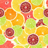 Citrus seamless background Royalty Free Stock Photography