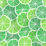 Citrus seamless background Stock Image