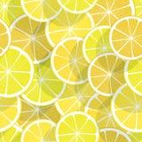 Citrus seamless background. Lemon Royalty Free Stock Photo