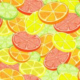 Citrus seamless background Stock Photo
