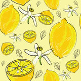 Citrus seamless pattern. Seamless repeating pattern with lemons, flowers and leaves Royalty Free Stock Image