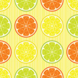 Citrus seamless pattern Stock Image