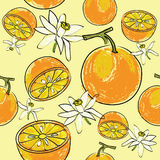 Citrus seamless pattern. Seamless repeating pattern with oranges fruit and flowers Stock Photography